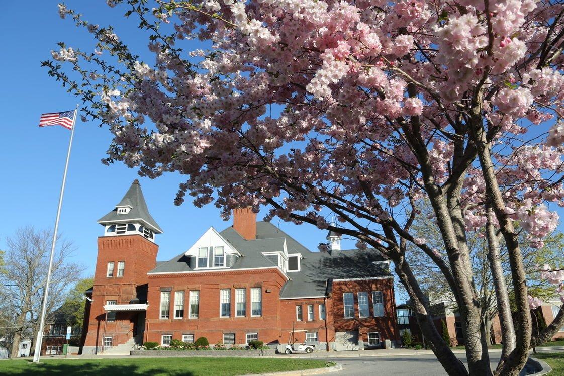 Thornton-Academy