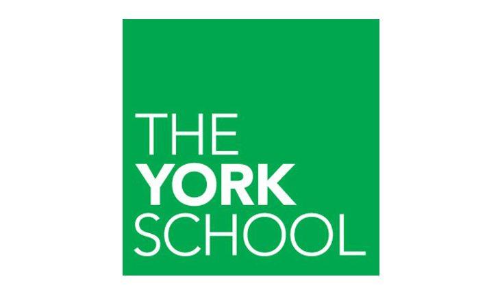 kariyer fırsatı, york okulu