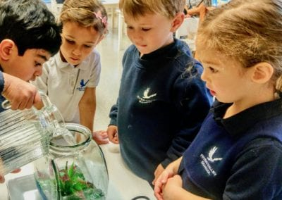 Primary students at River Valley School filling an aquarium